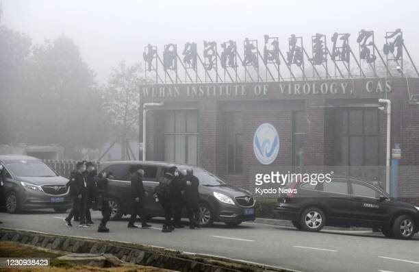 Motorcade carrying members of the World Health Organization's team investigating the origins of the coronavirus pandemic arrives at the Wuhan...