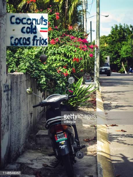 motor en koude kokosnoten te koop, caribische eiland isla mujeres, mexico - mujeres fotos stockfoto's en -beelden