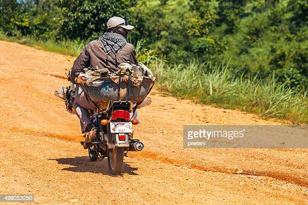 Motorcycle driver carries a lot of chickens. Benin, West Africa.