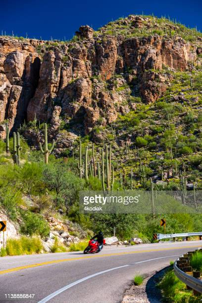 a motorcycle on mountain road in mt lemmon near tucson arizona - mt lemmon stock photos and pictures