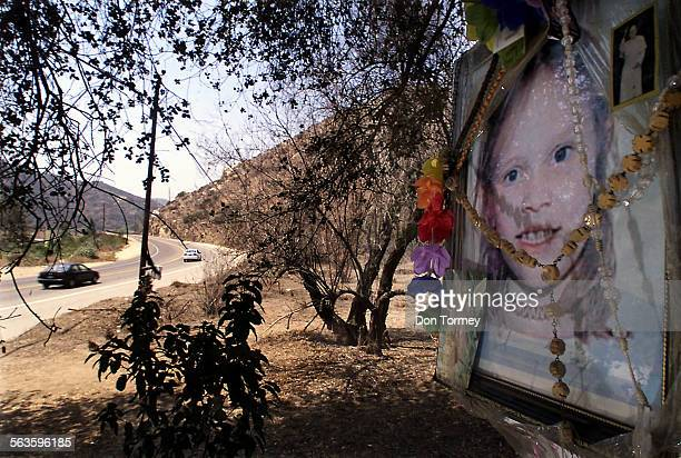 Motorists pass the site were a portrait of Danielle VanDam decorated with religious and other items is placed on a tree at a makeshift memorial near...