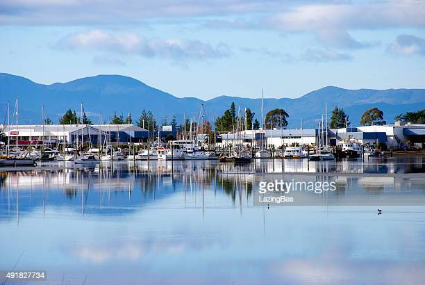 motueka marina, tasman region, new zealand - nelson city new zealand stock pictures, royalty-free photos & images