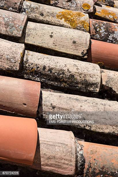 mouldering french roofing shingles - ems forster productions stock pictures, royalty-free photos & images