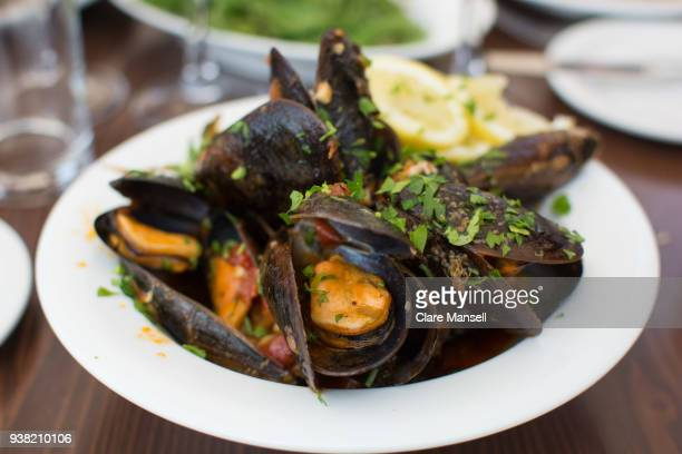 moules - mussel stock pictures, royalty-free photos & images