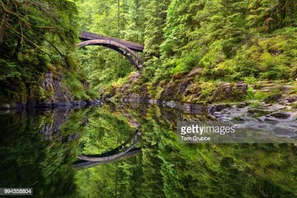 Moulton Falls Bridge Reflection