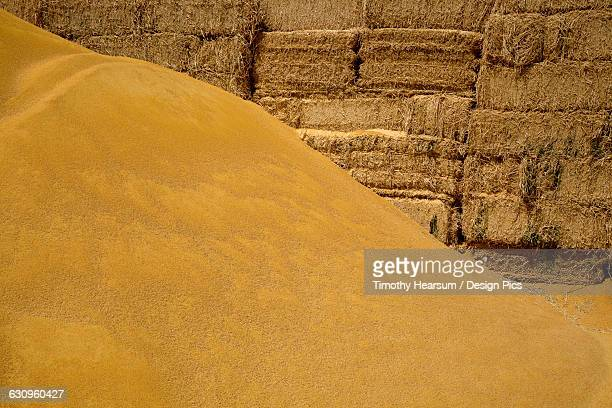 a mound of processed corn (corn gluten meal) used for cattle and chicken feed is piled in front of hay bales,also used for feed, imperial valley - timothy hearsum stock photos and pictures