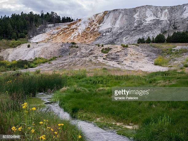 Mound Terrace, Mammoth Hot Springs