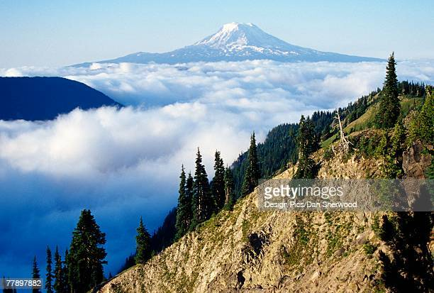 'Mount, Adams, above, cloud-filled, valley'