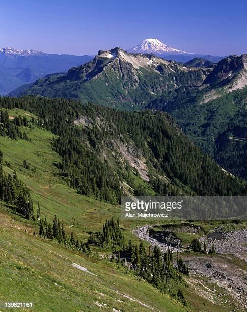 Mount Adams beyond the Tatoosh Range, Mount Rainier National Park. Washington. USA