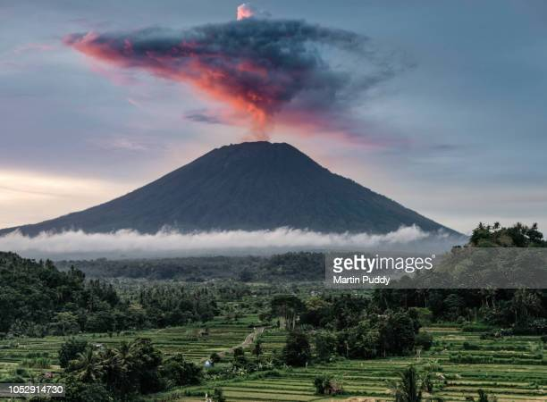 mount agung during eruption, at sunset, with rice paddies in foreground - vulkan stock-fotos und bilder