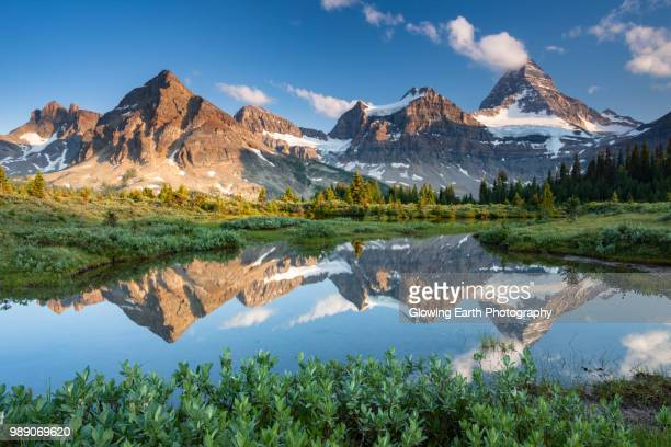 mount assiniboine provincial park, edgewater, british columbia, canada. - bc stock pictures, royalty-free photos & images