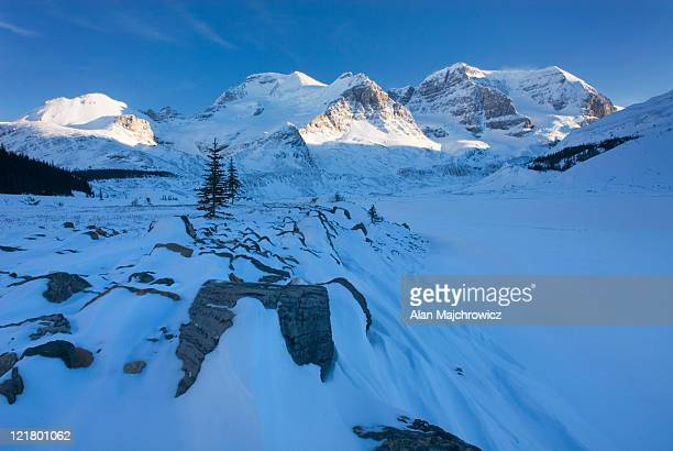 Mount Athabasca and Mount Andromeda in winter seen from the glacial plain of the Sunwapta River, Jasper National Park , Alberta, Canada