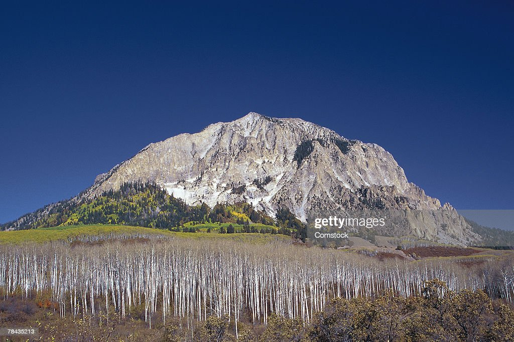 Mount Baldy from Kebler Pass in Colorado : Stockfoto
