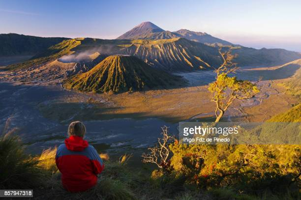 mount bromo - bromo tengger semeru national park - cemoro lawang - indonedia - bromo crater stock photos and pictures