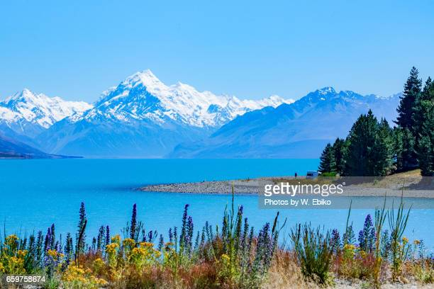 mount cook, new zealand - 湖 stock pictures, royalty-free photos & images