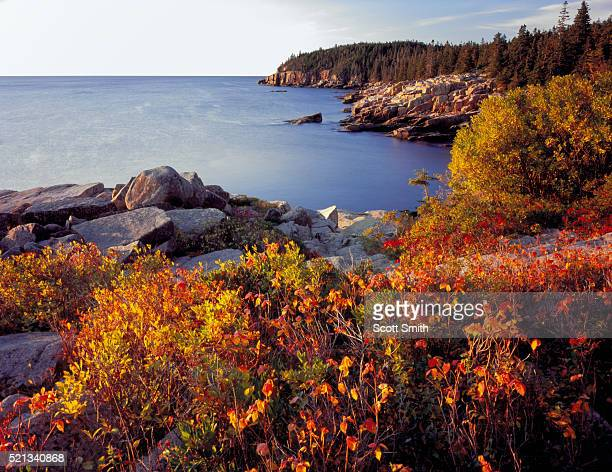 mount desert island - maine stock pictures, royalty-free photos & images