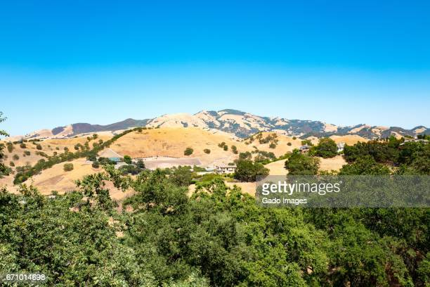 mount diablo - foothills stock pictures, royalty-free photos & images
