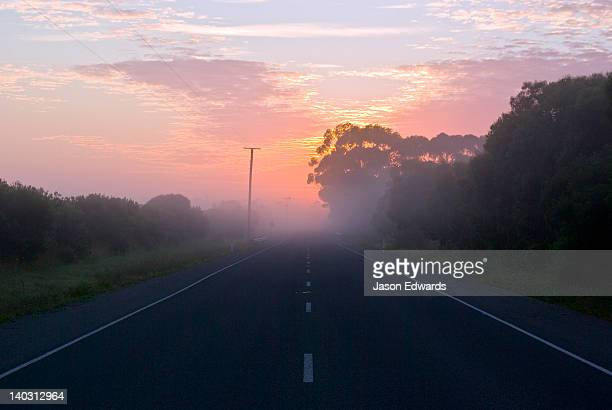 Winter fog descends over a quiet country road at dawn.