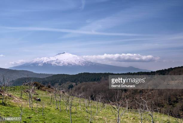 mount etna - bernd schunack stock photos and pictures