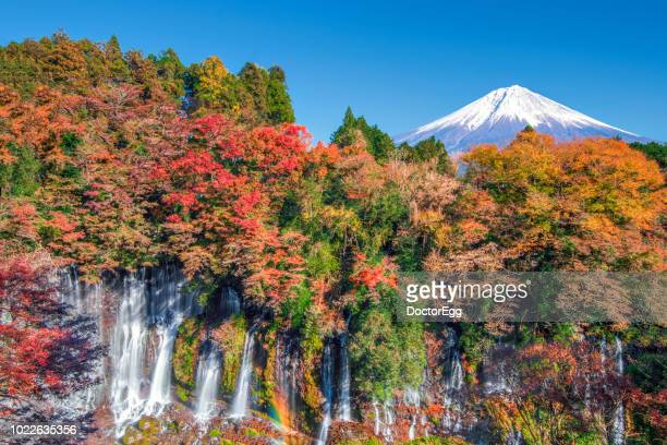 Mount Fuji and Colourful Maple Tree with Mount Fuji Background in Autumn Blue Sky Day at Shiraito Waterfall, Japan