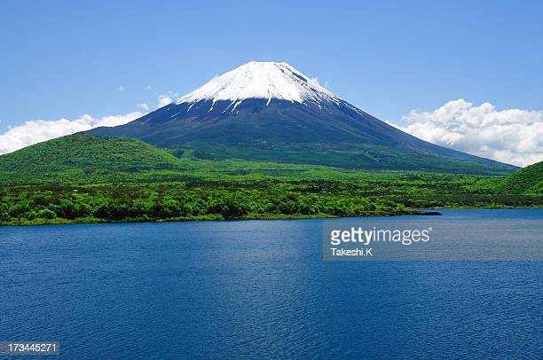 mount fuji and lake motosu-ko of early summer - mount fuji stock photos and pictures