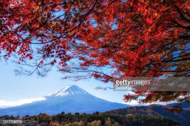 Mount Fuji and Red Maple Tree in Autumn at Kawaguchiko Lake, Japan