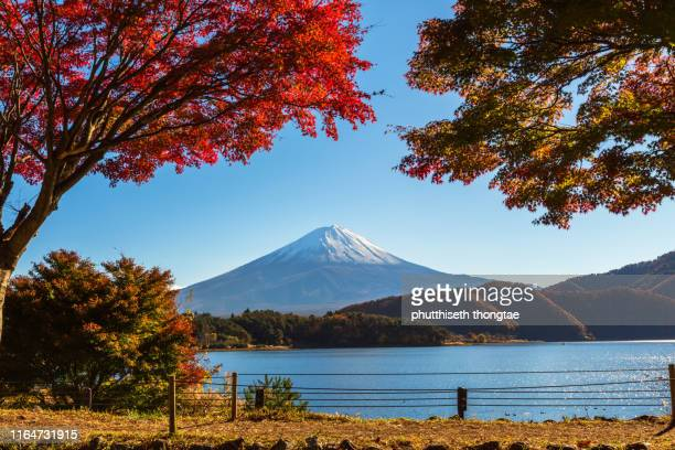 mount fuji in autumn, fuji mountain or fujisan located on honshu island, is the highest mountain in japan. - shinto shrine stock pictures, royalty-free photos & images
