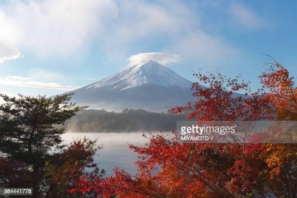 mount fuji in japan. - miyamoto y ストックフォトと画像