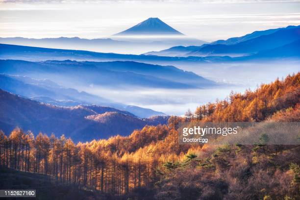 mount fuji with morning mist at takabotchi highlands in autumn, nagano, japan - 長野県 ストックフォトと画像