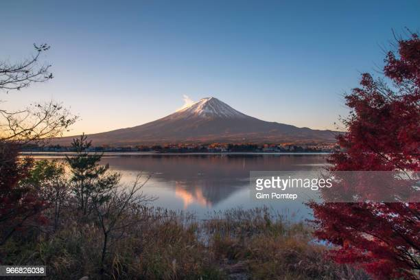 mount fuji with red maple , yamanashi , japan - shizuoka stock photos and pictures