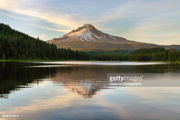 mount hood at trillium lake reflection - mt hood stock pictures, royalty-free photos & images