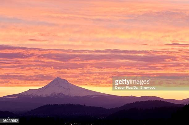 mount hood, mount hood national forest, oregon, usa - dan peak stock photos and pictures