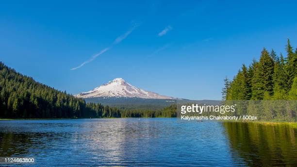 mount hood or - {{asset.href}} stock pictures, royalty-free photos & images