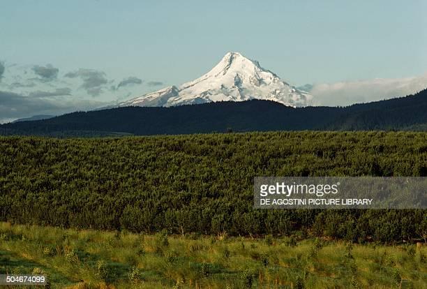 Mount Hood Oregon United States of America