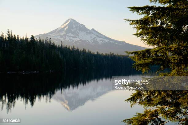 mount hood reflecting in lost lake, hood river, oregon, united states - hood river stock pictures, royalty-free photos & images