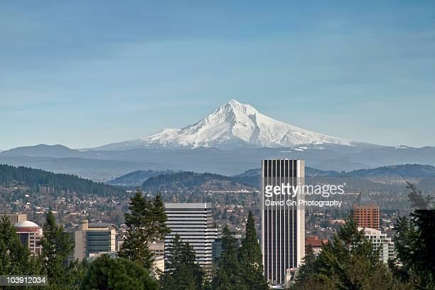 mount hood view with portland downtown skyline - portland oregon stock pictures, royalty-free photos & images