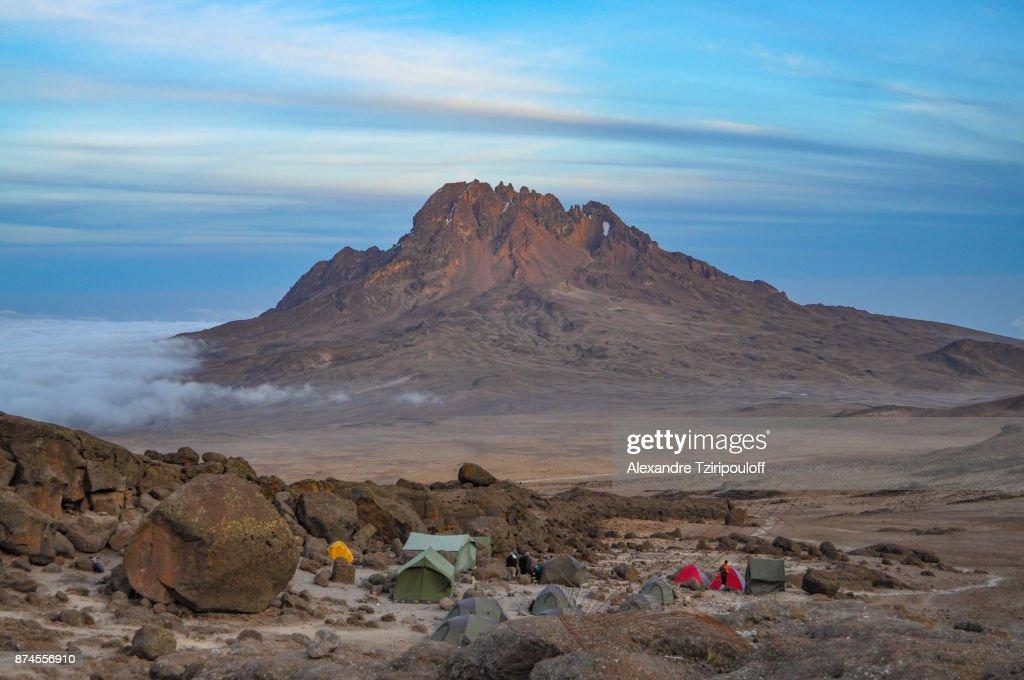 Mount Kilimanjaro : Stock Photo
