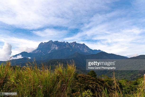 mount kinabalu - kota kinabalu stock pictures, royalty-free photos & images