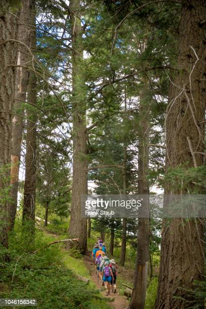 mount lemon hikers - mt lemmon stock photos and pictures