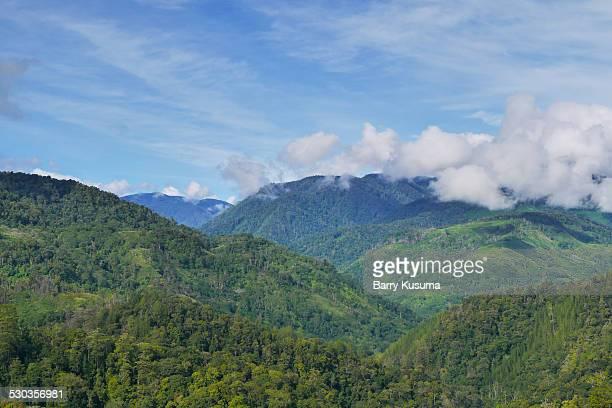 Mount Leuser National Park.