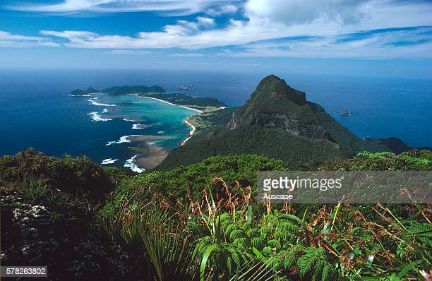 Mount Lidgbird from Mount Gower with coral reef and lagoon on left and rainforest species in the foreground Lord Howe Island New South Wales Australia