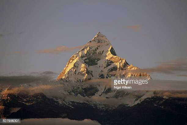 mount machhapuchchhre - machapuchare stock photos and pictures