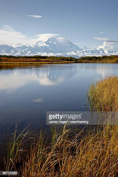 mount mckinley (mount denali), denali national park and preserve, alaska, united states of america - mt mckinley stock photos and pictures