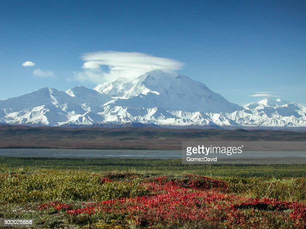 mount mckinley in the fall with clouds and red tundra - mt mckinley stock photos and pictures