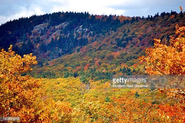 Mount Megunticook in autumn