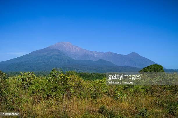 mount meru volcanic peak, tanzania - meru filme stock-fotos und bilder
