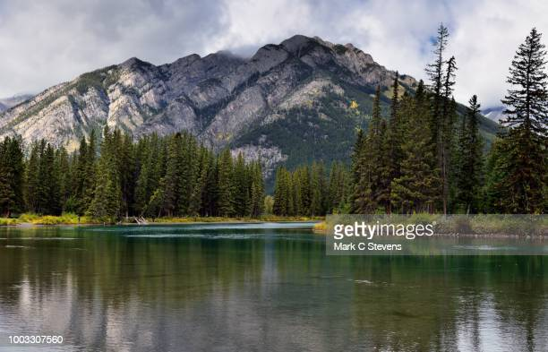 mount norquay and a setting along the banks of the bow river. - bow river stock pictures, royalty-free photos & images
