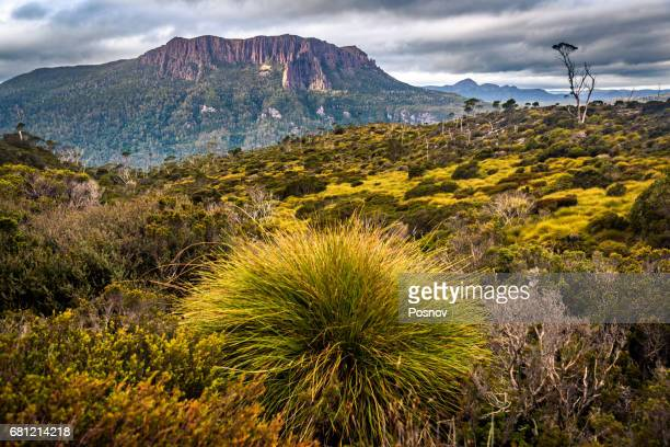 Mount Oakleigh, Overland track, Tasmania