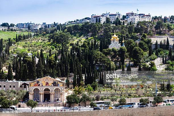 mount of olives - garden of gethsemane stock pictures, royalty-free photos & images