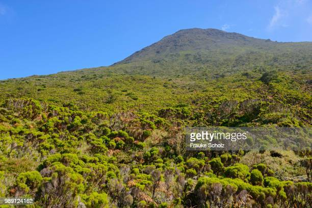 mount pico, highlands region, island of pico, azores, portugal - stratovolcano stock photos and pictures